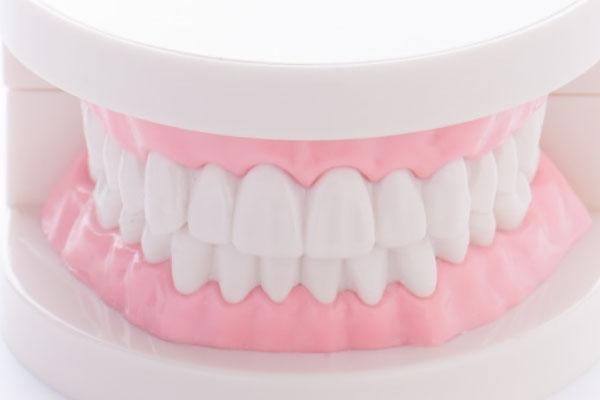 歯並び全体の調和